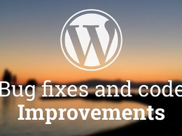 Fix any Wordpress Bug/issues