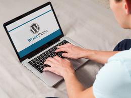 Install Wordpress, WP Theme And Setup Like Demo, or Fix Wordpress Or Responsive Issue