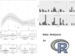 Provide an advanced analysis of your data in R  — 1 Hour