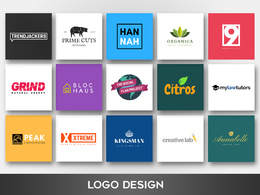 Create a high quality professional logo design