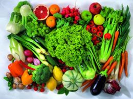 Supply 20 Unique Vegetarian Recipes