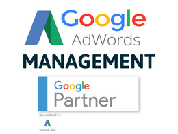 Manage your Google Adwords PPC Campaign for 1 Month - Management