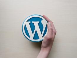 Provide 1 hour of wordpress website update/support