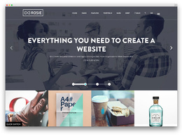 Design and develop your website with attractive UI