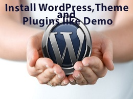 Install your WordPress theme like demo