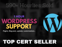 Provide 1 hour Wordpress Support, updates, plugins etc..