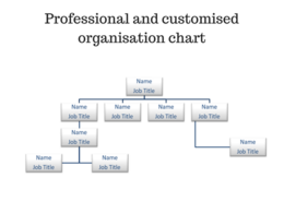 Design a professional company organisation chart