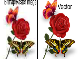 Convert image to vector or logo or sketch in 24 hours