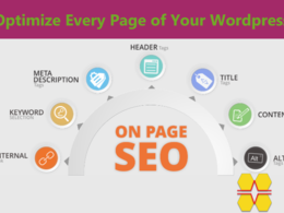 Perfect ON Page SEO by a SEO Expert for your Wordpress Website
