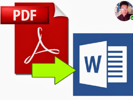Edit your PDF Or JPEG 20 Pages Document into Editable File