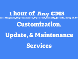 1 hour of updates/ customization to any cms website