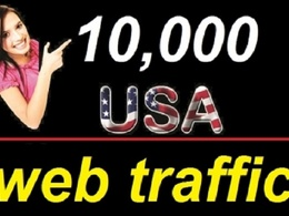 Drive 10,000 real USA traffic to your website