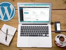 Do 1hr wordpress build, bug fix, development or support work