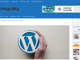 Publish a Guest Post on Vinaora.com - DA 90