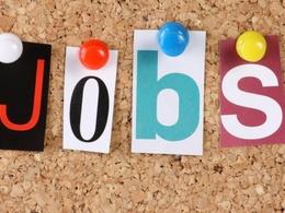 Write nine 200 word job adverts for £45