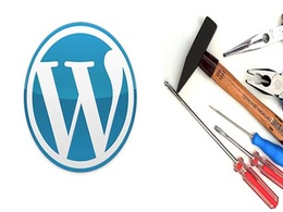 Fix your wordpress issue within a day.