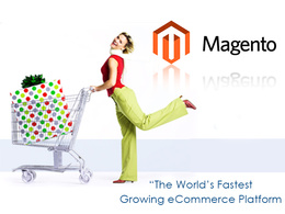 Install Magento theme with plugins & modules