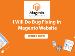 Provide 1 hour of updates/ customization on your Magento website
