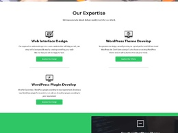 Design 5 page responsive web site from scratch for you