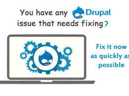 Fix any Drupal issue