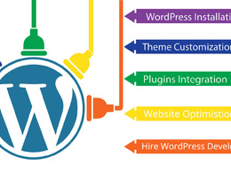 Develop, Fix, Customize Your Wordpress Website