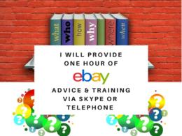 Provide 1 Hour of eBay Training and Advice Via Skype or Phone