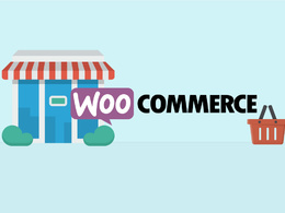 Do 100 product entry in your woo-commerce website