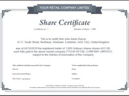 New shares issued on Companies House & Share Certificate