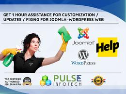 Provide 1 hour WordPress/Joomla customization/updates assistance