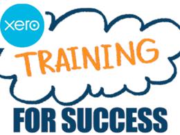 Provide one hour of Xero Training