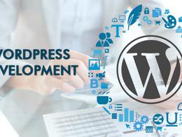 Be your personal wordpress website developer