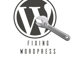 Fix any Wordpress Issues or Problems
