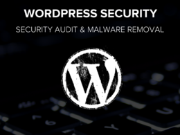 Remove malware from WordPress and run security audit