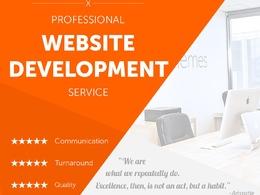 Professional Top Quality Website Development