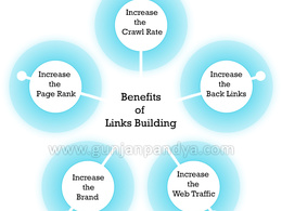 I will provide you the best quality 170 quality back links