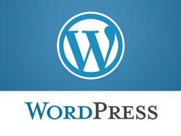 One hour of WordPress customizations, bug fixes, error fixes