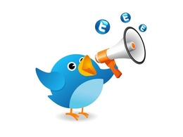Do Twitter Marketing Professionally And Manually