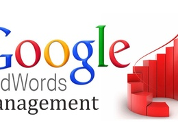 Setup Optimize And Manage Google Adwords PPC Campaign and Bing.