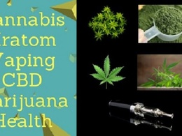 Publish Cannabis, Kratom, Vaping, Cbd, Marijuana, Health Article