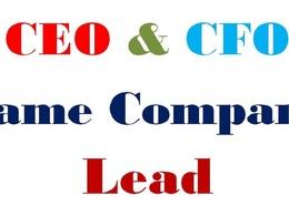 Collect same company CEO&CFO 200 Valid Leads