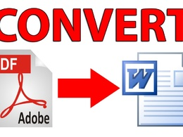 Convert 100 scanned PDF or jpg or png image to word or excel