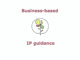 Provide business-related patent advice