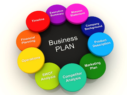 Write you a Comprehensive Business Plan