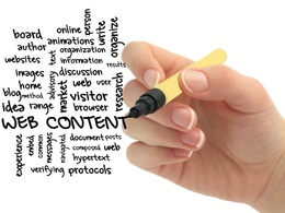 Be Your Professional Website Content Writer
