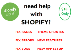 Provide 1hr of updates/customization to your Shopify website
