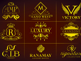 Design  stunning  logo with unlimited revisions + Source file