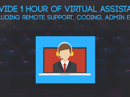 Provide 1 hour of Virtual Assistance / Remote Support / Coding