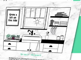 Responsive DIVI Theme Websites Developed by CoderKube Technology