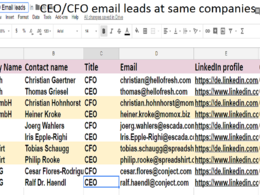 Provide 500 CEO/CFO email leads at same companies