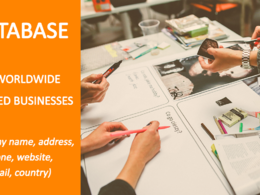 Provide a database of 500 businesses in the domain that you want